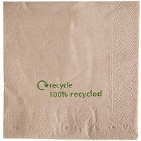 Serviettes double épaisseur en papier recyclé -...